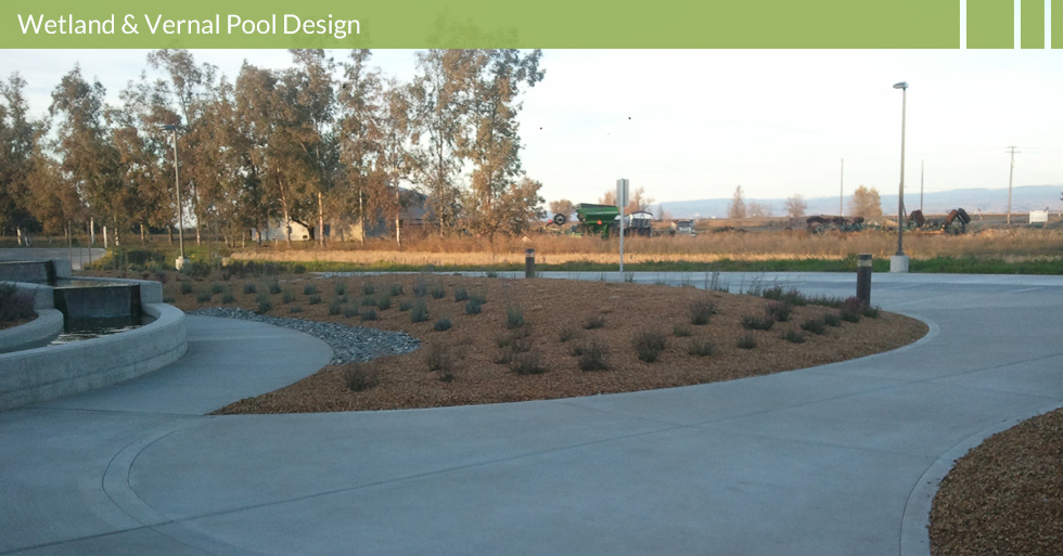 Melton Design Group, a landscape architecture firm, designed Lundeberg Farms in Richvale, CA. A beautiful use of almond hull mulch with bushes and a trough like water feature.