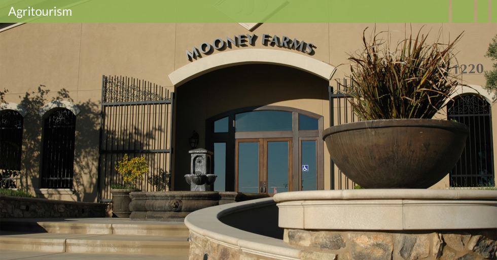 Melton Design Group designed Mooney Farms in Chico, CA.  Mooney Farms features a European design with natural stone, water features, artistic gateway, curved planters, olive trees, tasting room and retail center for their Bella Sun Luci products.