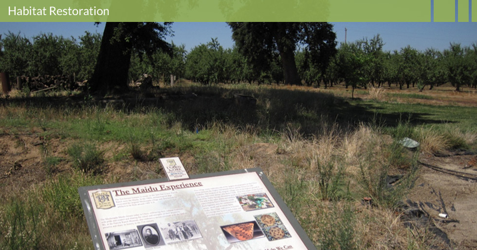 Melton Design Group restored the habitat at Patrick Ranch in Durham, CA. Featuring interpretative panels attributing the land to the Maidu Indian and restoring the land to enhance the natural agriculture.
